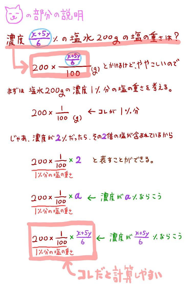 濃度の数値が複雑な文字式の場合の表現方法